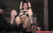 Tied up bondage subs tight ass fingered