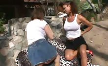 Busty MILF Moms Go At It