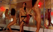 party live webcams